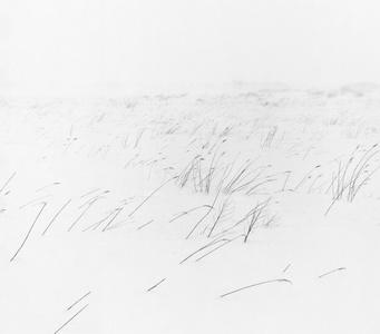 Snowland, SL095 BHM