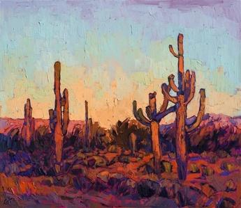 Saguaro Color