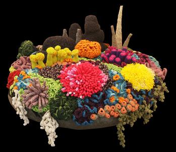 Watu Koral