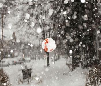 Big Orange Snowflake (Basketball)