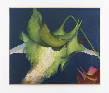 Victrola floribunda