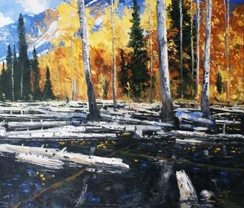 Beaver Pond #2