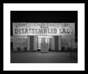 The Disassembled Lady (1972)