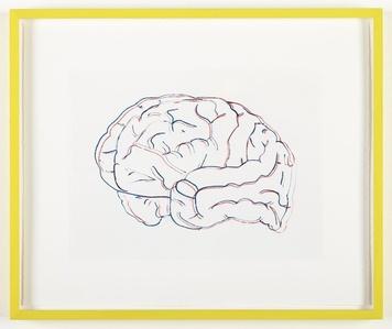 Stereoscopic Brain (Neon Lights and Polar Bear)