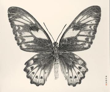 Butterfly2014-8