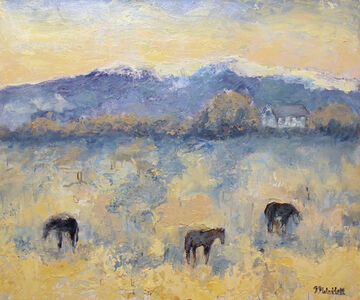 Home Place Horses