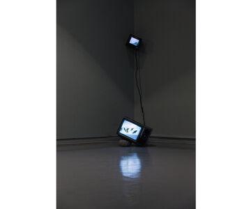 Untitled (TV Fishbowl)