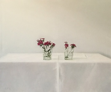 Algunas flores (primavera)