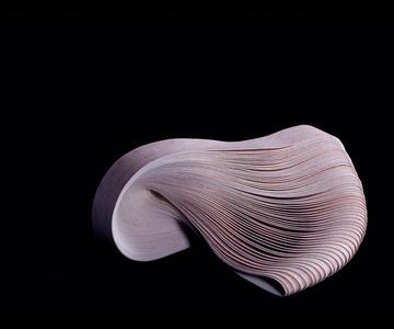 Photosculpture (Wood)