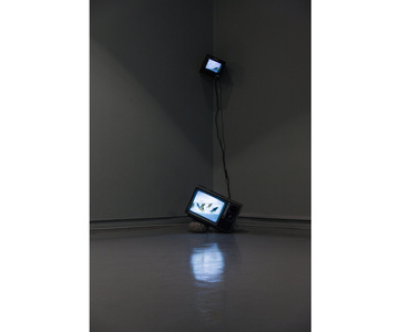 Untitled (TV Fishbowl)