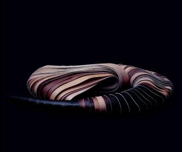 Photosculpture (Piel)
