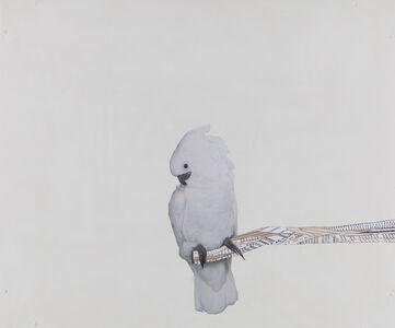 Portrait of the Artist as Full-on Bird