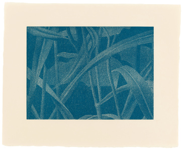 »Gräser I, Detail 6, Mittelblau«