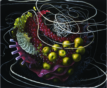 Still Life with Gastric Peptide