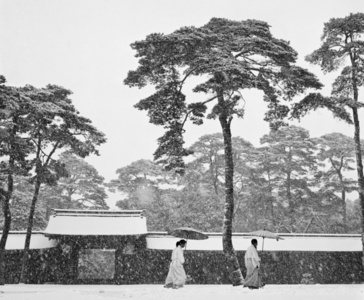 JAPAN. Tokyo. Courtyard of the Meiji shrine