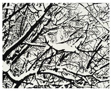 First Snow 010B