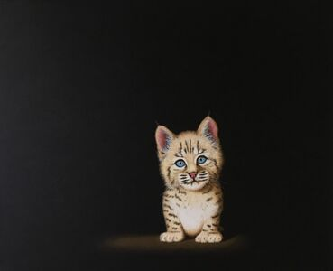 Ferocious Bobcat