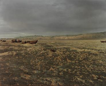 Bomb and Convoy, Bravo 20 Bombing Range, Nevada