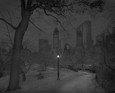 Late Fall, Central Park, New York City