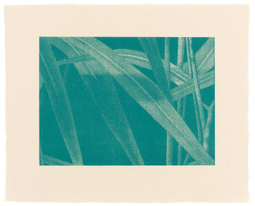 »Gräser I, Detail 3, Türkis«