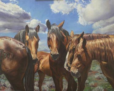 Rodeo Stock #3