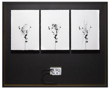 Sound Triptych Archive Box