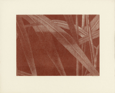 Gräser I (Detail 3)
