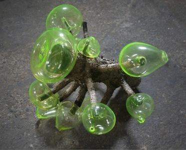 Pine Uran