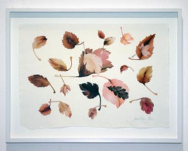 Leaves Study VII