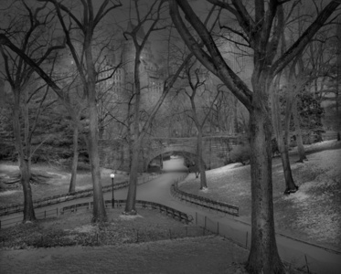 Snow Dusting, Central Park, New York City