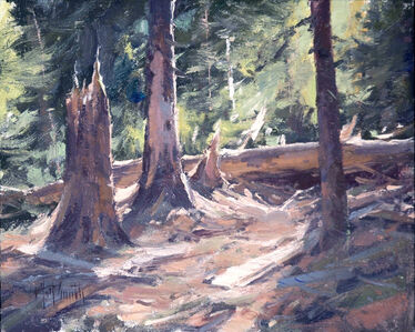 """""""An Old Forest"""""""