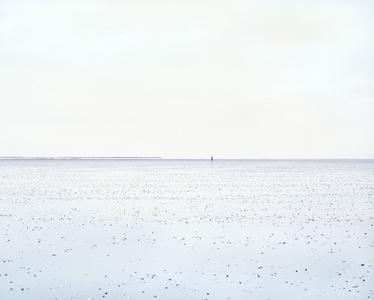 Single Wanderer