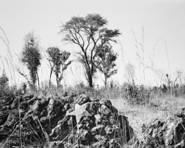"Unmarked mass grave on the outskirts of Cuito Cuanavale (From the ""As Terras do Fim do Mundo"" series)"