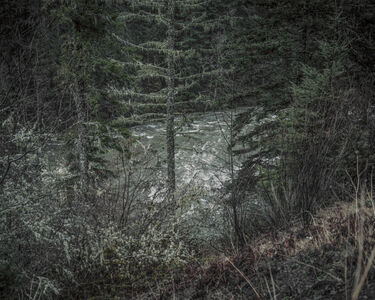 From the series Darkwood, #9