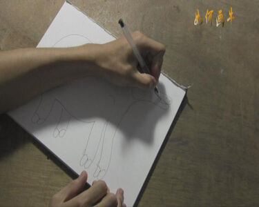 How to Draw A Cow 如何画牛