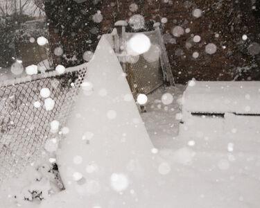 More Snow (Ping Pong Balls)