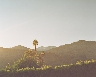 Palm Springs, CA 04