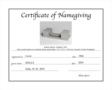 Certificate of Name Giving