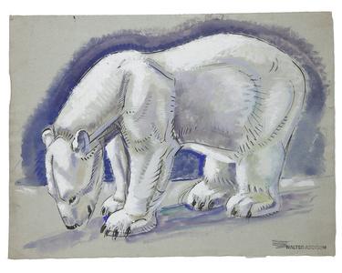 Bears: Polar Bear Standing