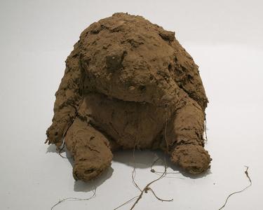 Untitled (Mud Animal)