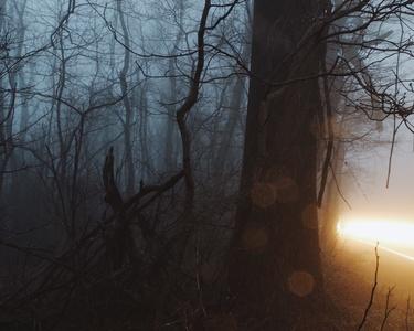 """""""The Myriad"""" Clarke County, VA"""