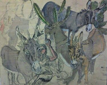 Donkey Menagerie