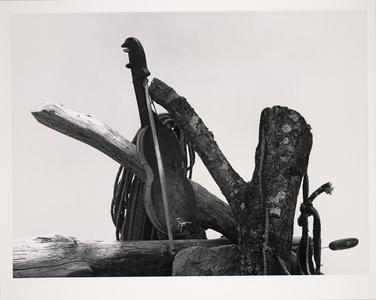 Huichol Violin