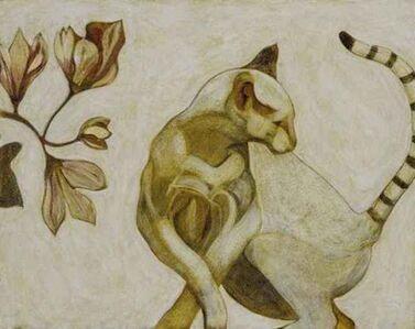 Ringtailed Cat
