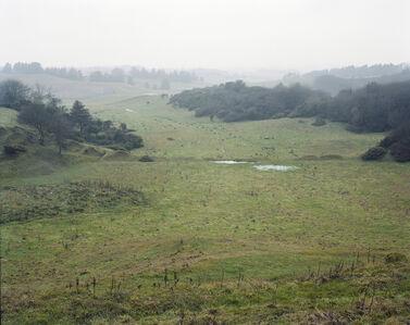 Landscape II