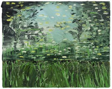 Pântano / Swamp