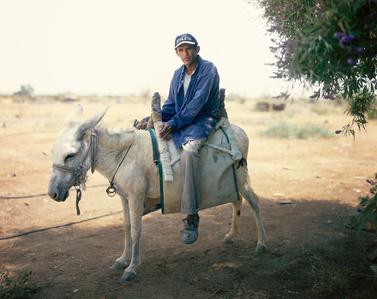The man on the White Donkey