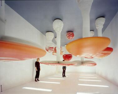 Upside-Down Mushroom Room