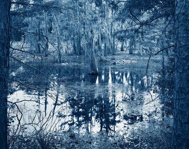 Blue Bayou #9