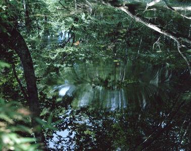 Water Mirror 14, WM-61